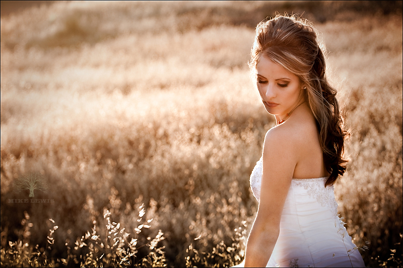 trash the dress, corona, mike lewis photography